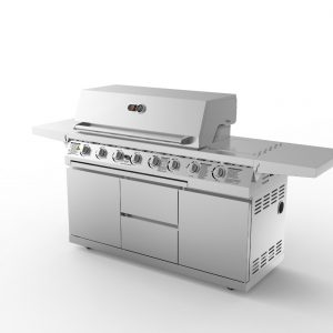 Whistler Grills Cirencester 6